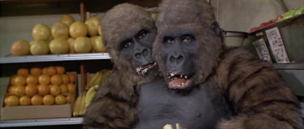 gorillawith2heads