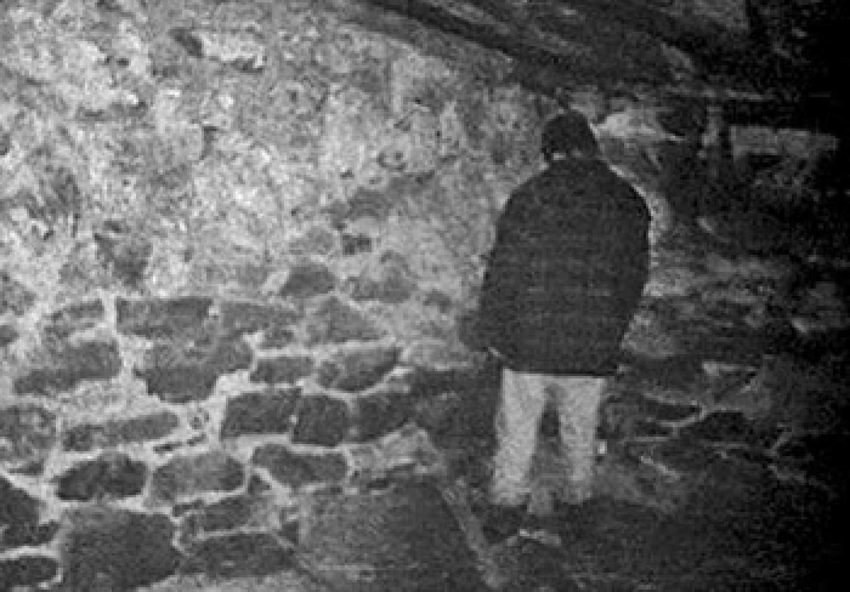 the blair witch project 1999 episode 1 decades of horror 1990s decades of horror. Black Bedroom Furniture Sets. Home Design Ideas